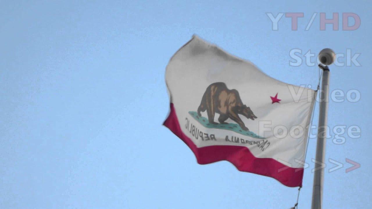 California Flag Bear Original