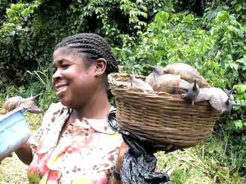 Ghana Africa - buying snails