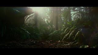'My head was spinning': Daisy Ridley on 'Skywalker'