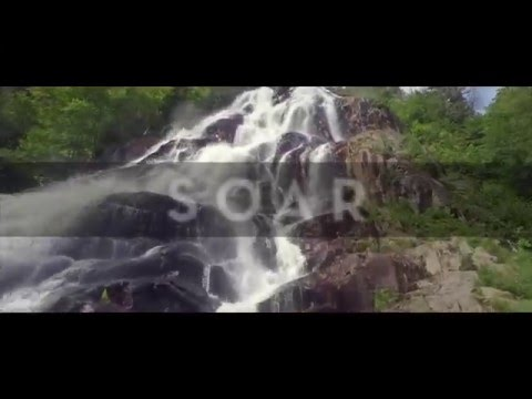 Meredith Andrews - Soar [Official Lyric Video]