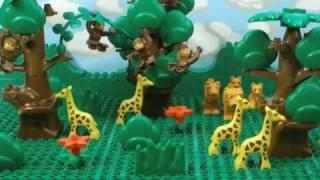 New Zoo Exhibit