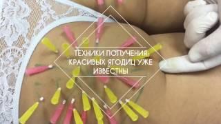 3 L Anatomy Faice 20 октября обучение в Днепропетровске