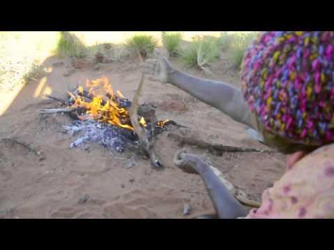 Aboriginal Hunting Practice Increases Animal Populations