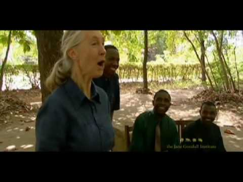 Jane Goodall's Roots & Shoots