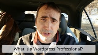What is a Wordpress Professional?