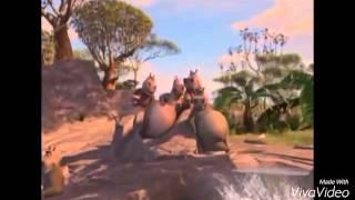 Африка Животные Мадагаскар