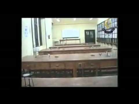 Victory College Alexandria- science Lab