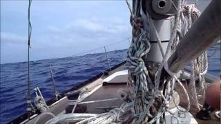 ARIEL Races to Bermuda 2011.wmv