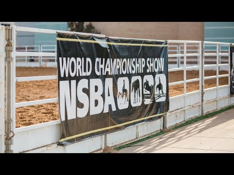 NSBA World Show - Monday, 8/13 Mustang Arena 8:00 AM