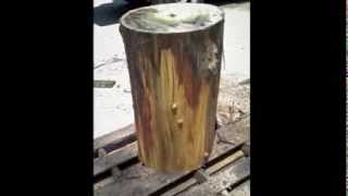 Project: Tree Stump Table