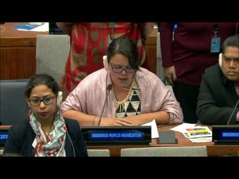 4th Meeting, Permanent Forum On Indigenous Issues, Fifteenth Session 9 20 May 2016   TINA NGATA