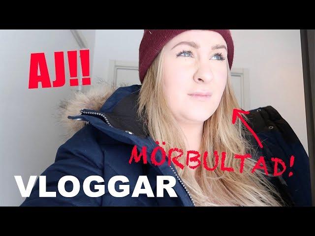 AJ SOM FAN! | VLOGGAR