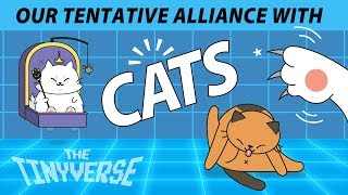 Our Tentative Alliance with Cats | Cat Domestication