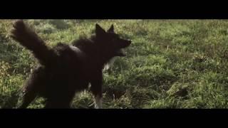 Luca Schreiner feat. Kimberly Anne - Missing [Official MV]