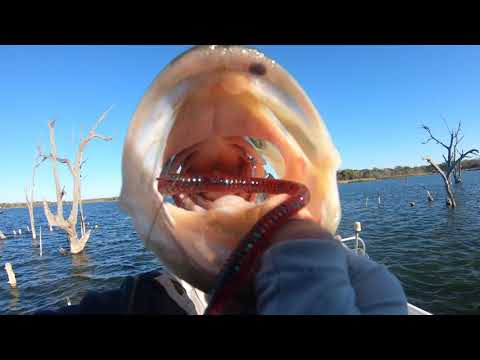 Fayetteville County Reservoir/ Lake Fishing For Largemouth Bass Pre-spawn Season 3/20