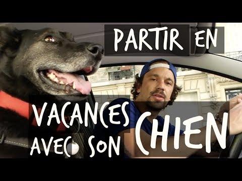 PARTIR EN VACANCES AVEC SON CHIEN - TOOPET
