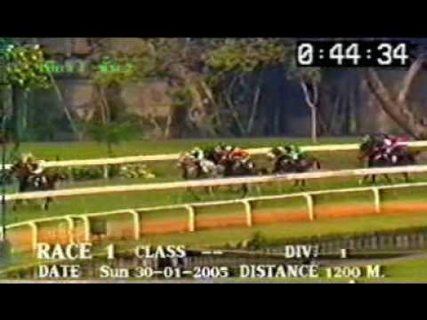 ม้าแข่ง ชั้น 2 ปี 48