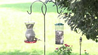 No/no® 3 Tier Standard Red & Brass Wild Bird Feeder Perky-pet® Sunflower Mesh Bird Feeder