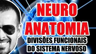 Vídeo Aula 071 - Neuroanatomia: Divisões funcionais do Sistema Nervoso (Somático e Visceral)