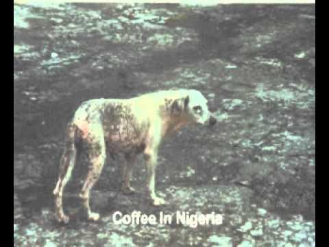 Coffee In Nigeria