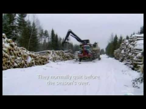 HD American Loggers S01E05   White Gold