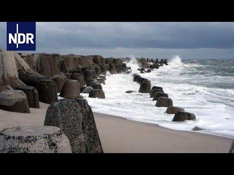 Küstenschützer in Schleswig-Holstein   die nordstory   NDR