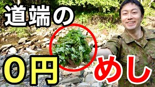 【ほぼ0円飯】道端で摘んだヨモギを10秒でアク抜き調理!【おまけ回】