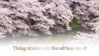 [Fanmade] Si Tâm Tuyệt đối Mãi Mãi Là Bao Xa(Trao Lầm Tình Yêu Cho Anh-Diệp Lạc Vô Tâm)