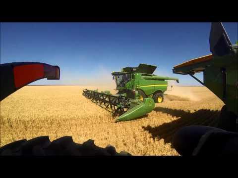 Australian wheat harvest 2013