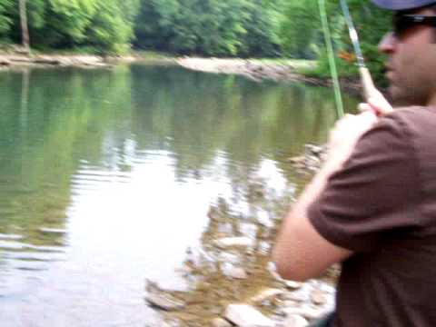 Fly fishing wv big wild brown trout catch youtube for Trout fishing in wv