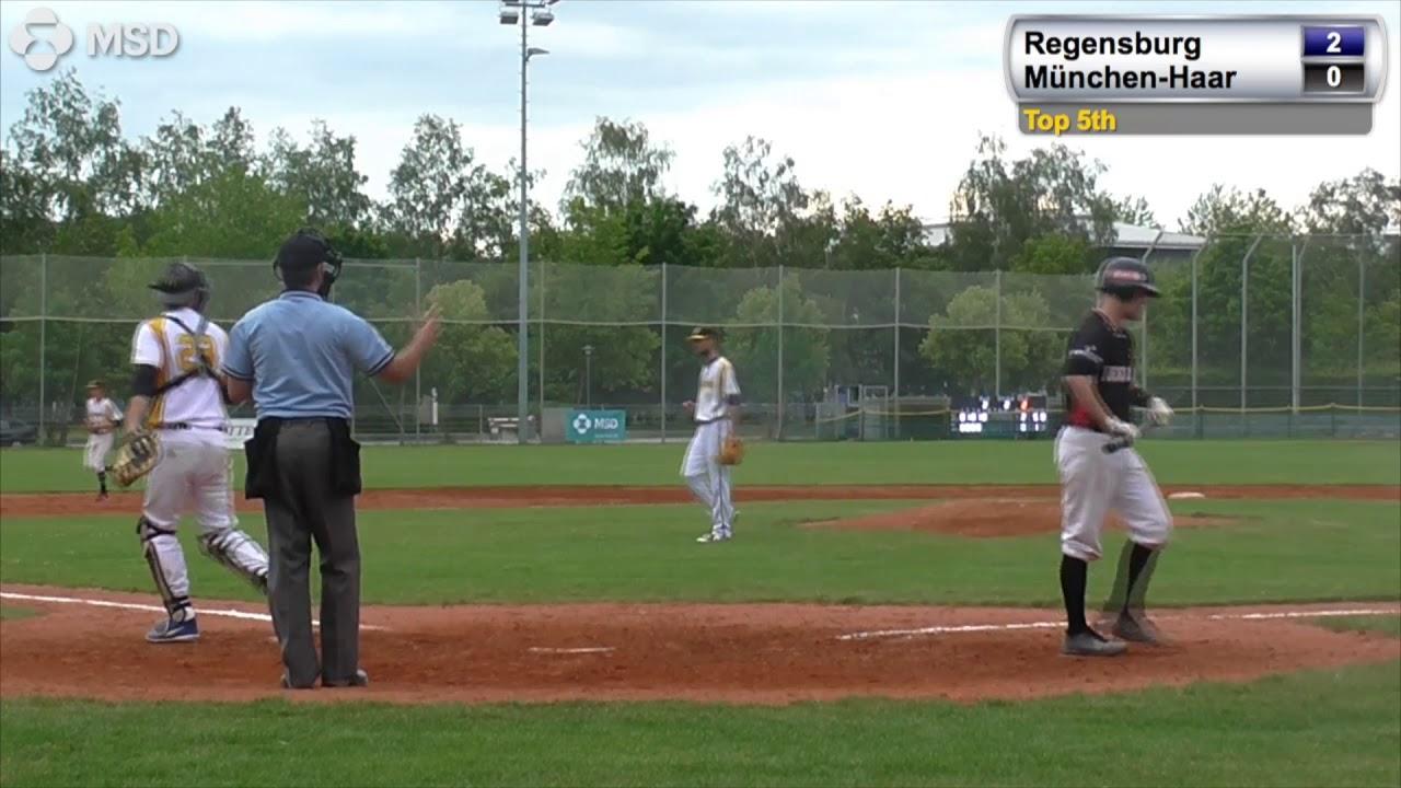 baseball münchen