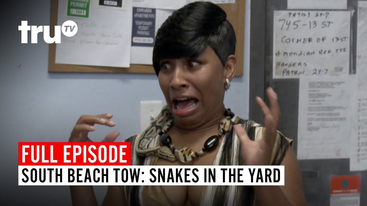 Download South Beach Tow | Season 3: Snakes in the Yard | Watch the Full Episode | truTV