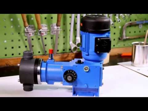 Pump maintenance part 1 disassembly;  Alltech Dosieranlagen