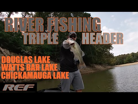 TRIPLE HEADER: Fishing Douglas, Watts Bar, And Chickamauga Lake For Fall Transition Bass