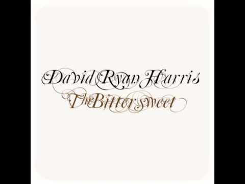 David Ryan Harris - Pretty Girl (album version)
