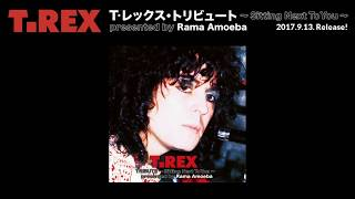 T.Rexをリスペクトする超豪華アーティストによるトリビュートアルバム...