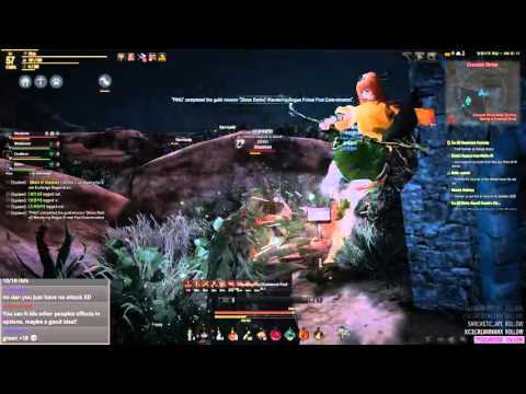 Black Desert longer node war