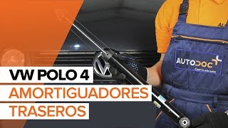 Mantenimiento Polo 9n - vídeo guía