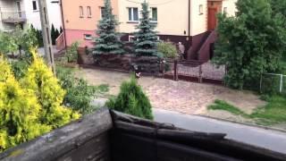 Pierdolnięta sąsiadka ze wsi