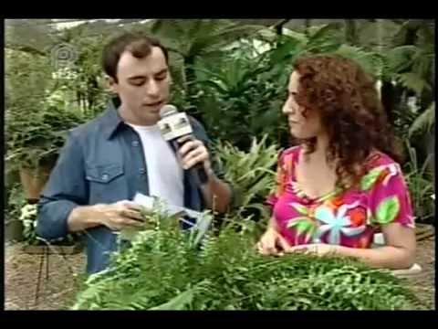 Curso Como Montar uma Empresa de Manutenção de Jardins - Pragas e Doenças - Cursos CPT de YouTube · Duração:  3 minutos 27 segundos