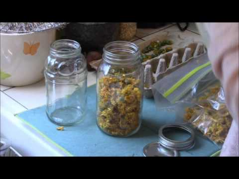 Infusing Herbal Oils | How To Do It