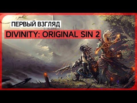Говорят, это одна из лучших cRPG последнего времени ● Divinity: Original Sin 2