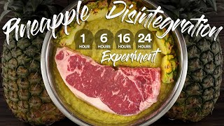 Will PINEAPPLE Completely DISINṪEGRATE a STEAK? | Guga Foods