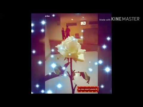 Karna su sayang - near ft.dean ( cover video lyric)