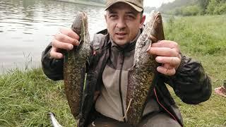 Ловля сома донками Рыбалка с ночевкой на канале имени Москвы