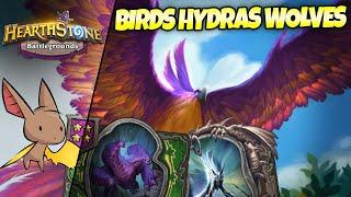 The Birds n Wolves n Hydras n Stuff Comp | Firebat Hearthstone Battlegrounds