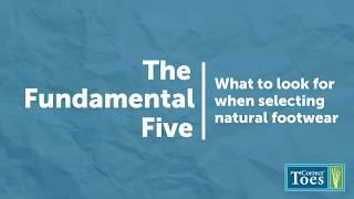 The Fundamental Five