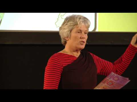 Power to the people, about community organized energy: Anne Stijkel at TEDxLeiden