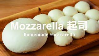 自製新鮮 Mozzarella 起司   怎麼可能不好吃﹗Homemade Mozzarella Recipe