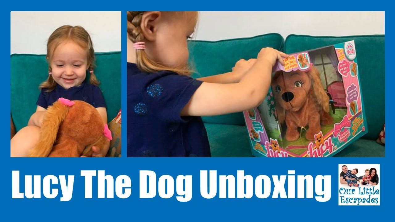 Lucy Dog Toy Review
